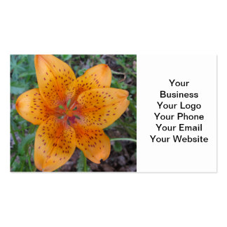 Lily Yellow Orange Speckled Pack Of Standard Business Cards