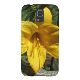 Lily Yellow Weathered Fence Galaxy S5 Cover