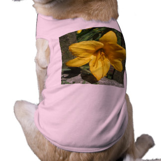 Lily Yellow Weathered Fence Pet Shirt