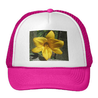 Lily Yellow Weathered Fence Trucker Hats