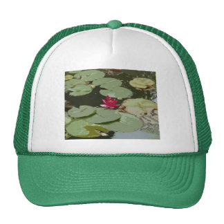 Lilypads Impressionism  Art Cap