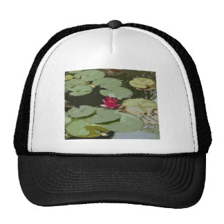 Lilypads Impressionism Art Mesh Hats