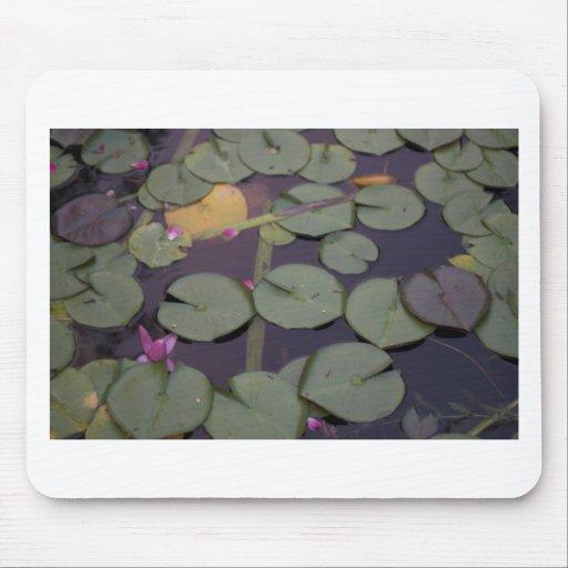 Lilypads Mousepad