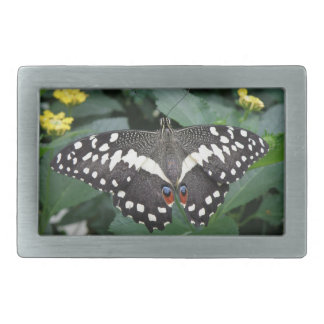 Lime Butterfly and Flowers Belt Buckle