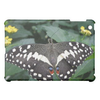 Lime Butterfly and Flowers  Cover For The iPad Mini