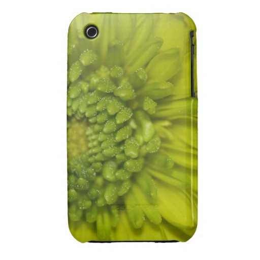 Lime Button Mum Macro Case-Mate iPhone 3 Case