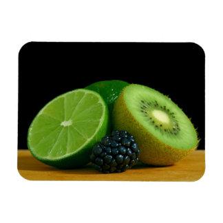 Lime, Kiwi and Blackberry Rectangular Photo Magnet