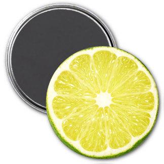 Lime Slice 7.5 Cm Round Magnet