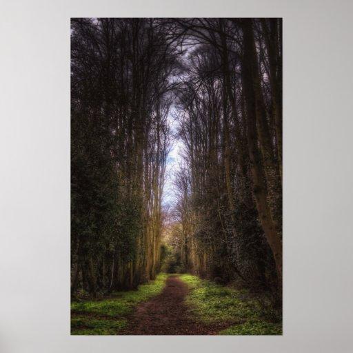 Lime Tree Path Print
