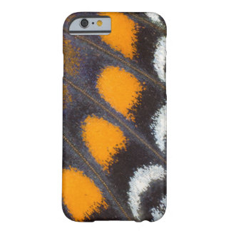 Limenitis a. astyanax male north american barely there iPhone 6 case