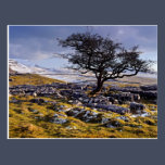 Limestone Country, The Yorkshire Dales post card