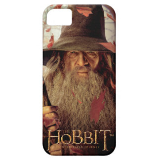 Limited Edition Artwork: Gandalf Barely There iPhone 5 Case