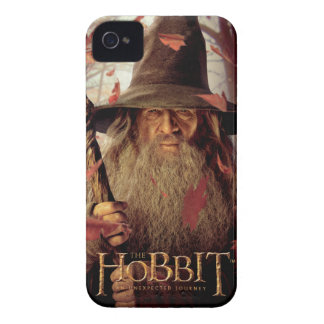 Limited Edition Artwork: Gandalf iPhone 4 Case-Mate Case