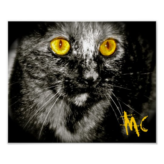 Limited Edition Monkey Cat  Canvas Print