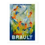 Limonade Brault Vintage PosterEurope Postcard