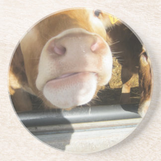 Limousin Brown Cow Coaster