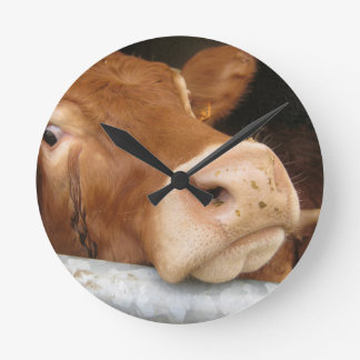 Limousin Cattle (Mad Cow) Wall Clocks