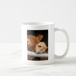 Limousin Cattle (Mad Cow) Mugs