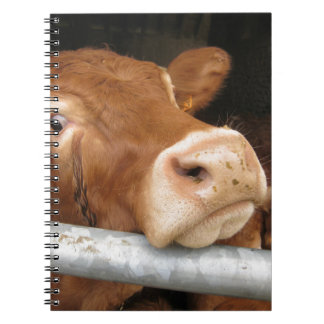 Limousin Cattle (Mad Cow) Spiral Notebook