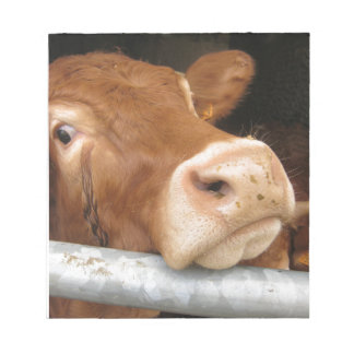 Limousin Cattle Mad Cow Note Pad