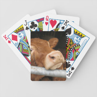 Limousin Cattle (Mad Cow) Poker Cards