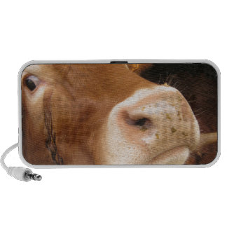Limousin Cattle Mad Cow Speaker System