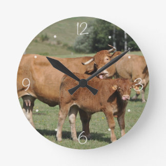 Limousin cow licking her calf wall clocks