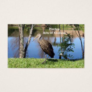 Limpkin (1118)  Acts of Kindness Cards