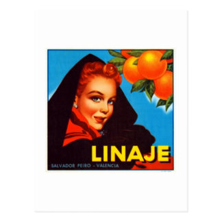 Linaje Valencia Oranges Postcard