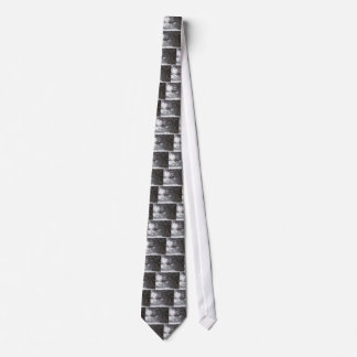lincoln memorial winter snow tie