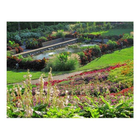 Lincoln, Nebraska Sunken Gardens #224n   0224 Postcard