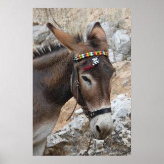 Lindos Donkey Poster