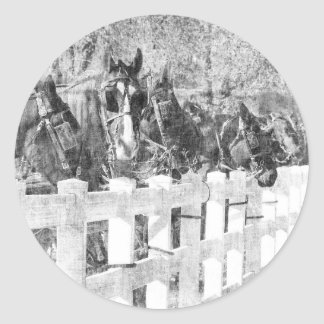 Line of Amish Horses Black and white Round Sticker