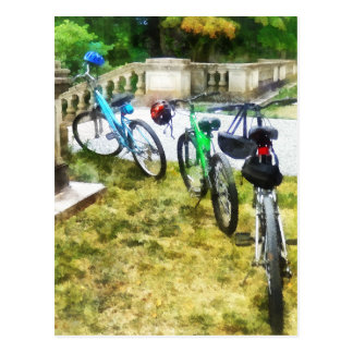 Line of Bicycles in Park Postcard