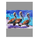 LINE OF PELICANS POST CARDS