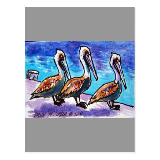 LINE OF PELICANS POSTCARD