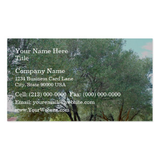 Lined Olive grove trees against blue sky Business Card Templates