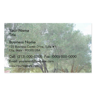 Lined Olive grove trees against blue sky Business Card