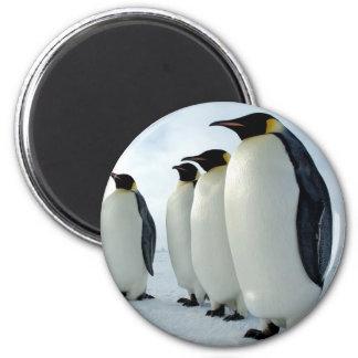 Lined up Emperor Penguins 6 Cm Round Magnet