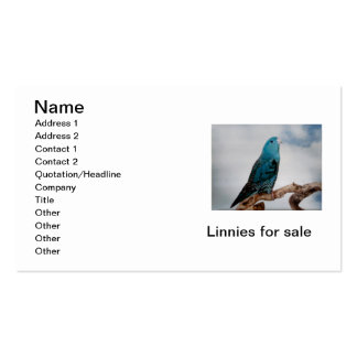 Lineolated Parakeet Business Card