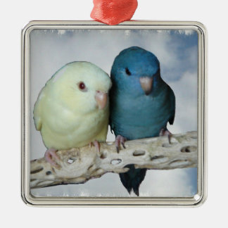 Lineolated parakeet pair christmas ornament