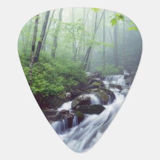 Linn Cove Creek cascading through foggy Guitar Pick