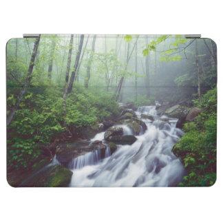 Linn Cove Creek cascading through foggy iPad Air Cover