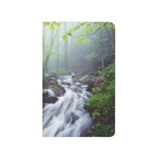 Linn Cove Creek cascading through foggy Journal