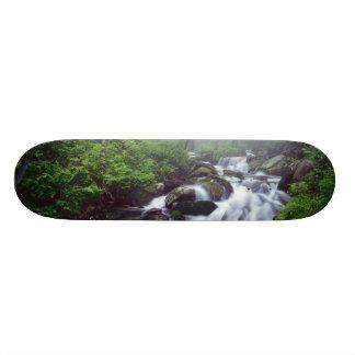 Linn Cove Creek cascading through foggy Skateboard