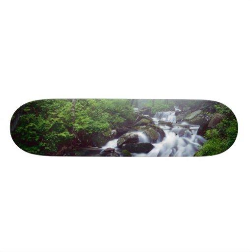 Linn Cove Creek cascading through foggy Custom Skateboard