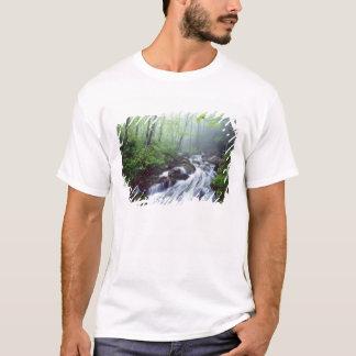 Linn Cove Creek cascading through foggy T-Shirt