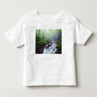 Linn Cove Creek cascading through foggy Toddler T-Shirt