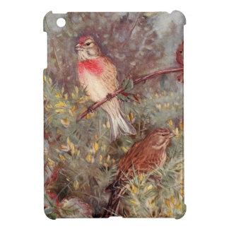 Linnent Birds Vintage Illustration iPad Mini Covers