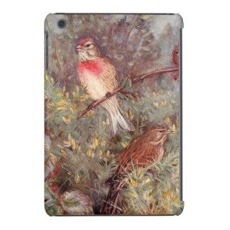 Linnent Birds Vintage Illustration iPad Mini Cover